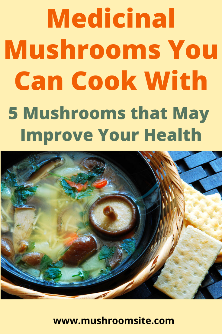 Cooking with Medicinal Mushrooms