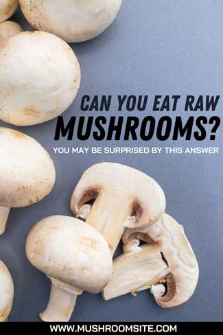 Can You eat Raw Mushrooms