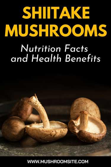Shiitake Mushroom Nutrition