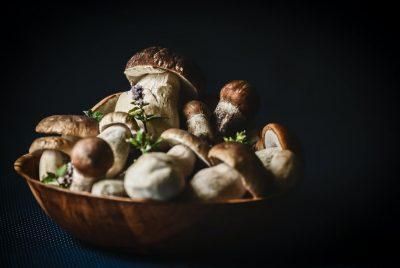 Porcini Mushrooms Recipes – 5 Great Ways To Cook Them